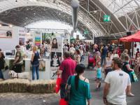 Adopter un chien dans un marché ou une exposition