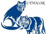 Cynolor