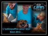 E.C.O. Canin Educatrice-Comportementaliste-Ostéopathe