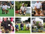 Beagles des chasseurs du temps