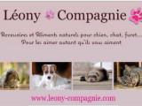Léony & Compagnie