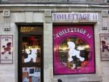Toilettage 14