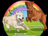 Aikenka Educanion canine