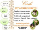 Cécile coach canin
