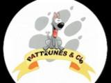 Pattounes & cie