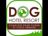 Dog Hotel Resort