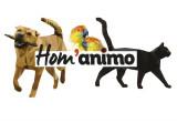 Visite de chien à domicile