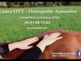 Laura ott ostéopathe animalier