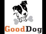 Good Dog – Education canine à Domicile