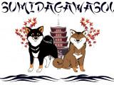 Sumidagawasou