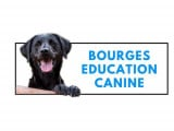 bourges education canine