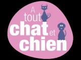A Tout Chat et Chien