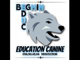 Beghin Education Canine