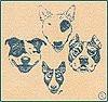 Club F.A.B.A.S. - Club Français des Amateurs de Bull terriers, d'Américan staffordshire terrier et d