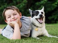 Le chien et les enfants