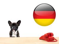 Législation & Formalités relatives aux chiens en allemagne