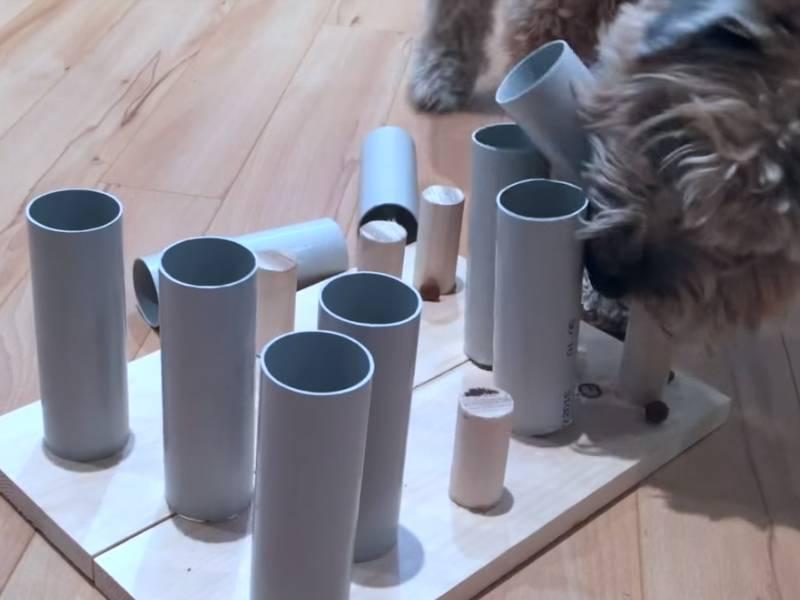 vid o fabriquer soi m me des jouets pour son chien. Black Bedroom Furniture Sets. Home Design Ideas