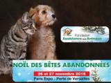 Pour Noël, un week-end d'adoption pour les chiens et les chats à Paris, Porte de Versailles