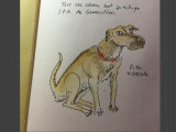 Le dessinateur Joann Sfar s'engage pour les chiens de la SPA