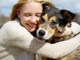 Animalerie, éleveur canin, refuge...: où adopter un chien?