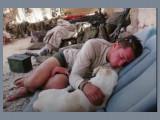 Craig et Fred, la belle histoire d'un soldat américain et de son chien
