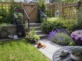 Aménager et sécuriser un jardin pour un chien