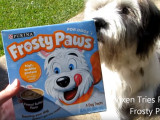 Nestlé et sa crème glacée pour chiens allergiques au lait