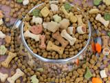 Les friandises pour chien : os à mâcher, biscuits, oreilles de porc...