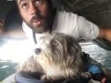 Un homme, un kayak et … un chien