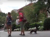 Deux enfants, un chien, un chat : lequel sera secouru en premier?