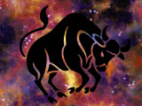 Astrologie canine : le chien Taureau (20 avril- 20 mai)