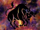Astrologie canine : Taureau (20 avril- 20 mai)