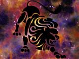 Astrologie canine : le chien Lion (23 juillet - 22 août)