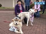 Wasao et Tsubaki, les employés de la gare d'Ajigasawa au Japon