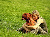 Des chiens au service de femmes victimes de violences conjugales