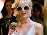 Paris Hilton et son chien dans le collimateur de la PETA