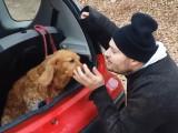 Comment calmer un chien agressif en voiture