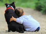 L'animal, une sentinelle pour l'enfant