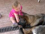 Un bébé et un berger allemand jouent à deux