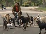 Franck Philip, un coach pour chiens à Paris