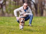 Comment devenir un bon maître pour son chien ?