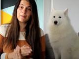 Education du chien et du chiot