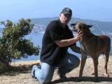 Apprendre à son chien la position debout