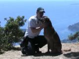 Apprendre à son chien la position assise (méthode 2)