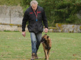 Comment choisir un bon éducateur canin ?