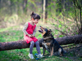 L'enfant et le chien : comment éviter les morsures ?
