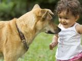 10 conseils aux enfants qui vivent avec un chien