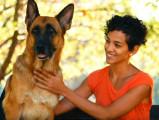 La dominance, étape clé d'une relation maître-chien saine