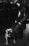 Etats-Unis : le rapper DMX vient d'être arrêté  pour cruauté envers les animaux