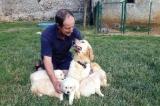 La hausse de TVA fait grogner dans les élevages canins